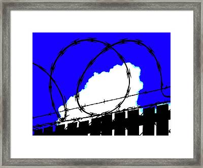 Framed Print featuring the photograph Black Barb by John King