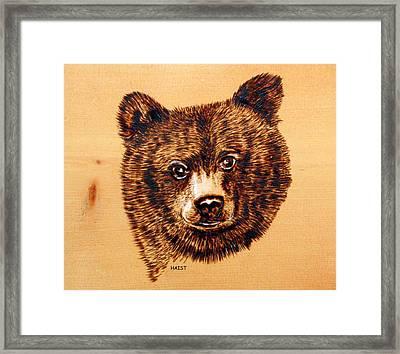 Black Bear Cub Framed Print by Ron Haist