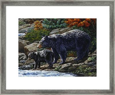 Black Bear Falls - Detail Framed Print by Crista Forest