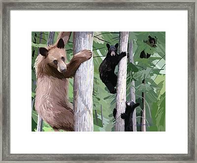 Black Bear Family Framed Print