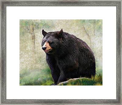 Framed Print featuring the painting Black Bear by Mary Almond