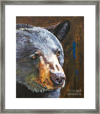 Black Bear The Messenger Framed Print by J W Baker