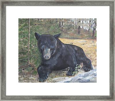Black Bear - Wildlife Art -scruffy Framed Print by Jan Dappen