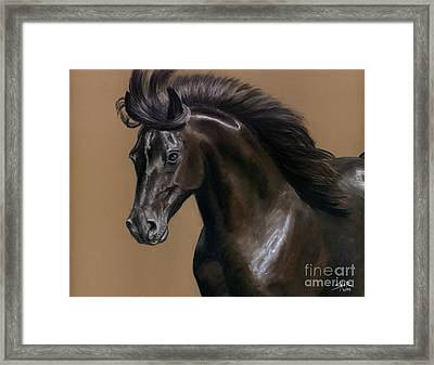 Framed Print featuring the painting Black Beauty by Sheri Gordon