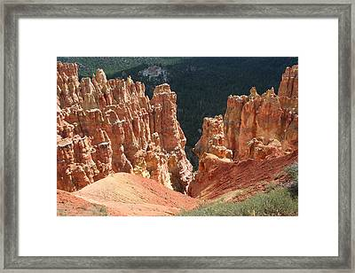 Black Birch Canyon Framed Print by Mary Gaines