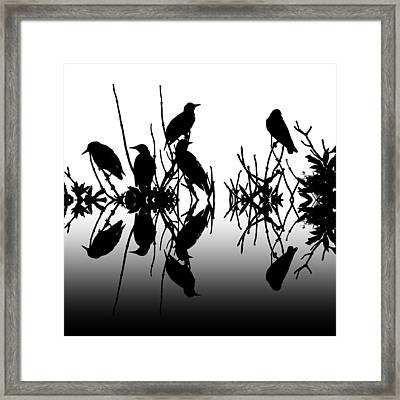 Black Birds Framed Print by Sharon Lisa Clarke