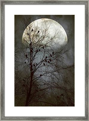 Black Birds Singing In The Dead Of Night Framed Print