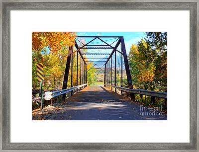 Black Bridge Framed Print