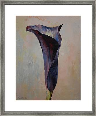 Black Calla Lily Framed Print by Michael Creese