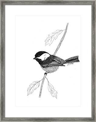 Black Capped Chick-a-dee Framed Print by Lee Halbrook