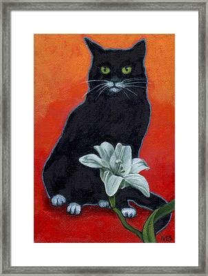Black Cat And Lily Framed Print