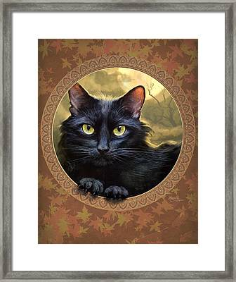 Black Cat Autumn Framed Print by Jeff Haynie