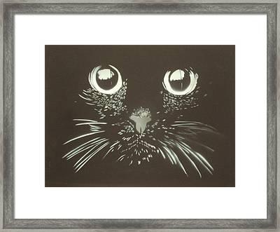 Black Cat Framed Print by Christopher Golding