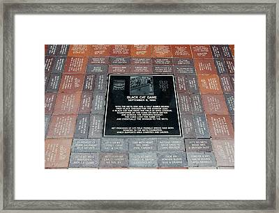 Black Cat Game Framed Print by Rob Hans