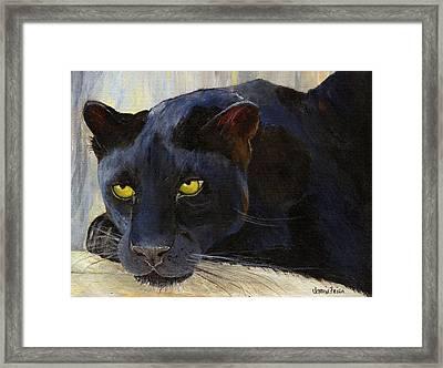 Black Cat Framed Print by Jamie Frier
