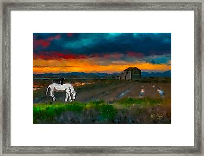 Framed Print featuring the photograph Black Cat On A White Horse by Juan Carlos Ferro Duque