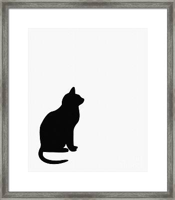 Black Cat Silhouette On A White Background Framed Print