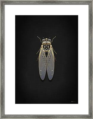 Black Cicada With Gold Accents On Black Canvas Framed Print