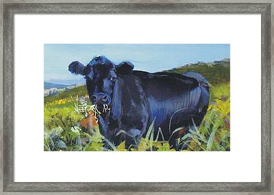 Cows Dartmoor Framed Print