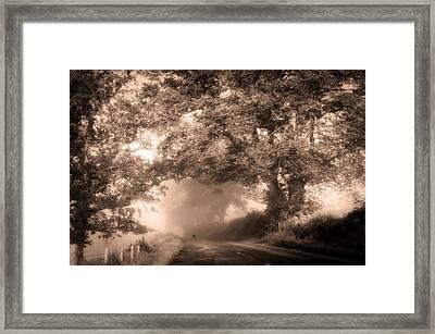 Black Dog On A Misty Road. Misty Roads Of Scotland Framed Print