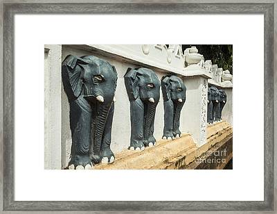 Black Elephants On Temple Wall Framed Print by Patricia Hofmeester