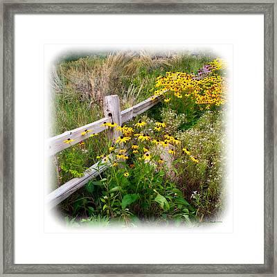 Black Eyed Susan Flowers Near Rustic Garden Fence Framed Print by Julie Magers Soulen