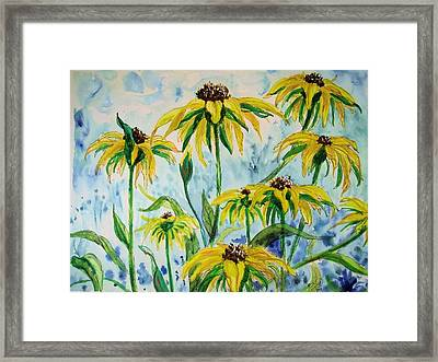 Black Eyed Suzans Dream Framed Print