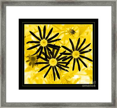 Floral - Black And Yellow Framed Print by John Stephens