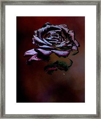 Black Fog Framed Print