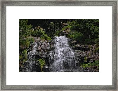 Black Forest Waterfall Framed Print by Joachim G Pinkawa