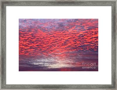 Black Friday Sunrise Framed Print