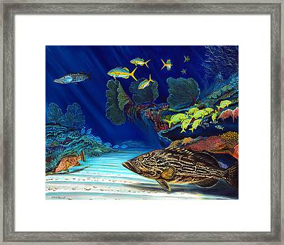 Black Grouper Reef Framed Print