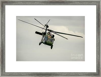 Black Hawk Swoops Framed Print