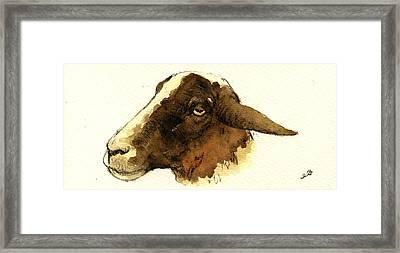 Black Head Sheep Framed Print by Juan  Bosco