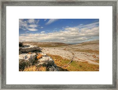 Black Head View 2 Framed Print by John Quinn