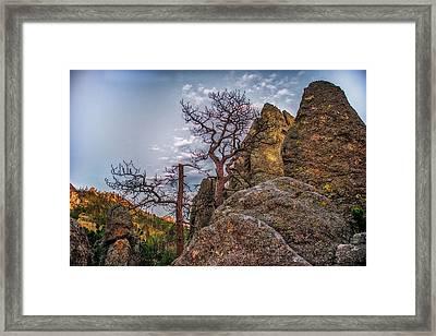 Black Hills Boulders Framed Print
