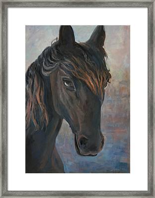 Black Horse Framed Print by Marco Busoni