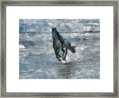 Framed Print featuring the painting Black Horse Running On The Beach by Georgi Dimitrov