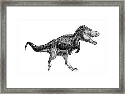 Black Ink Drawing Of Albertosaurus Framed Print