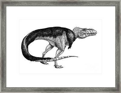 Black Ink Drawing Of Alioramus Remotus Framed Print