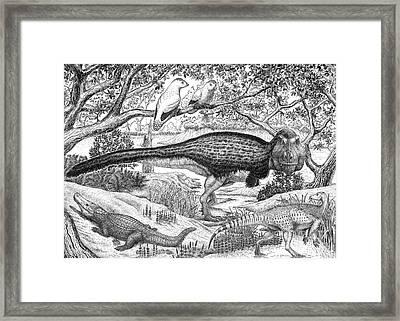 Black Ink Drawing Of Extinct Animals Framed Print