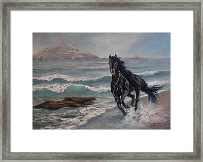 Black Jack  Framed Print