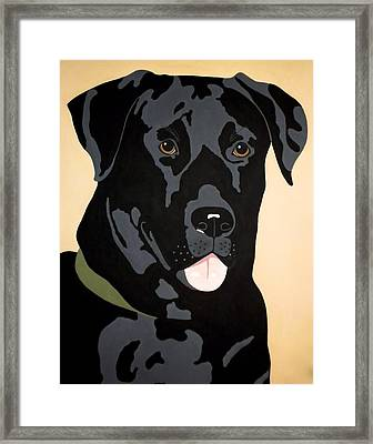 Black Lab Framed Print by Julie Stubbs