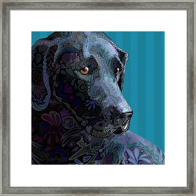 Black Lab Squared Framed Print by Sharon Marcella Marston