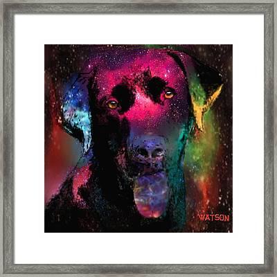 Black Labrador Dog Framed Print by Marlene Watson