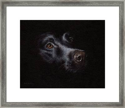 Black Labrador Painting Framed Print by Rachel Stribbling