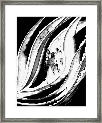 Black Magic 302 Inverted Framed Print by Sharon Cummings