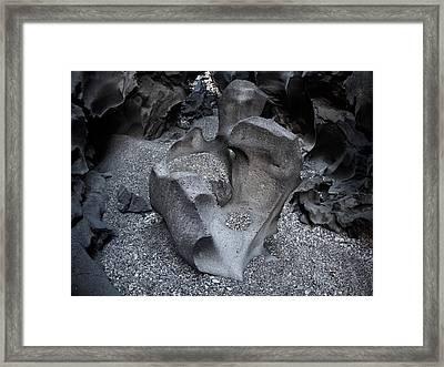 Black Magic Canyon 8b Framed Print by Leland D Howard