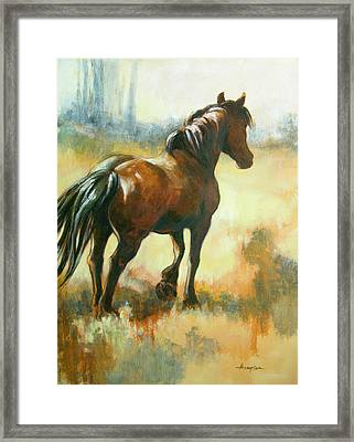 Black Mare In Summer Framed Print by Tracie Thompson
