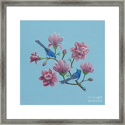 Black Naped Blue Flycatchers In Magnolias Framed Print